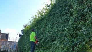 farm hedge summer version with the stihl kombi130r and Stihl RTS Super Harness