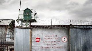 Рабский труд зеков. Навальный и другие