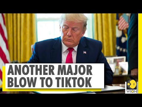 Trump signs executive order banning any transactions with TikTok owner | World News