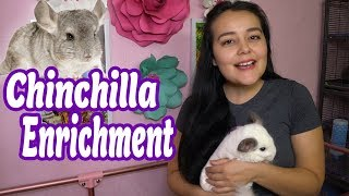 Perfect Toys For Happy Chinchillas