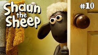 Laba-laba - Shaun the Sheep [The Spider]