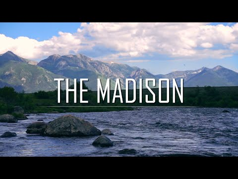 Madison River Caddis and Stonefly Hatch
