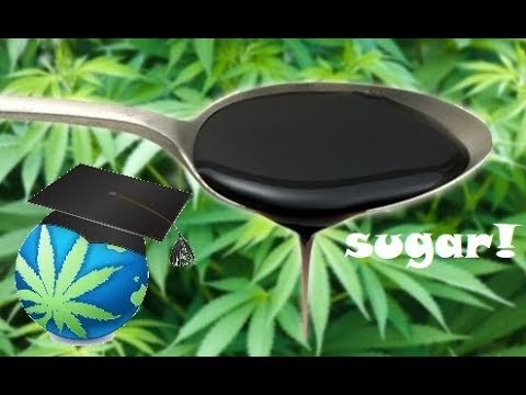 Adding Sugars To Cannabis Plants Guide – Molasses, Corn Syrup or Honey