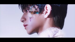 [MV]SEVENTEEN - 舞い落ちる花びら (Fallin' Flower)