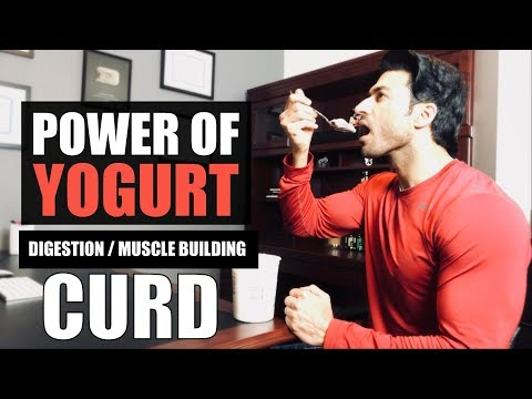 Power of Yogurt (CURD) for Digestion, Muscle Building & other benefits | by Guru Mann