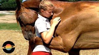10 zwierząt, które uratowały ludzkie życie