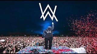 Alan Walker Drops Only   Neversea Festival 2018 Part 1
