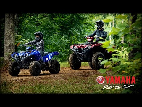2021 Yamaha Grizzly 90 in Trego, Wisconsin - Video 1