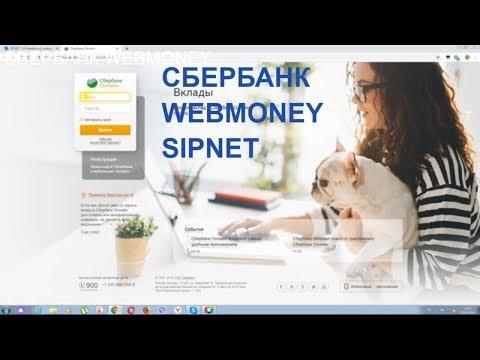 Видеообзор SIPNET