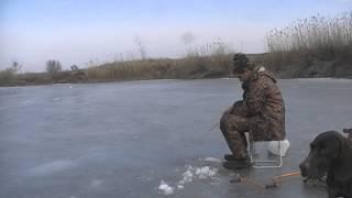 Волгоградская область рыбалка зимняя