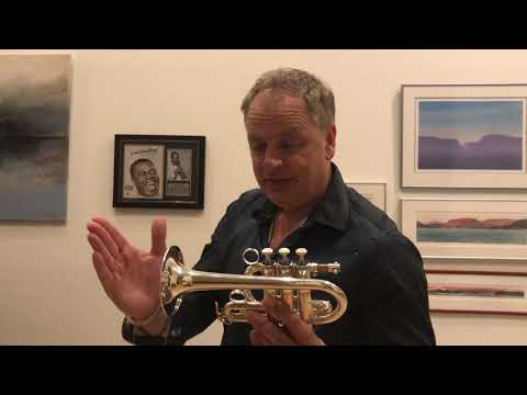 Gard trumpet case conversion
