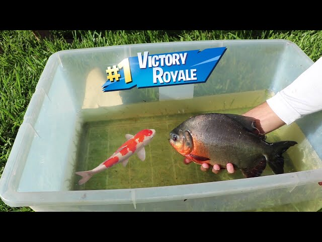 Fish BATTLE ROYAL!! Craziest Fish WINS!