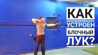Как устроен блочный лук? How does compound bow works?