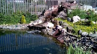Искусственный пруд на моей даче с экосистемой. Водопад. Альпийская горка.