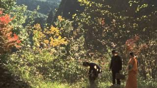 女王蜂-Trailer