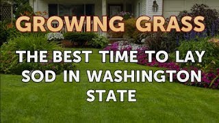 The Best Time to Lay Sod in Washington State