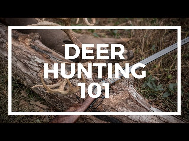 Choosing the Best Deer Rifle