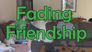 Fading Friendship