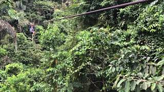 Zip-lining in the Amazon Jungle