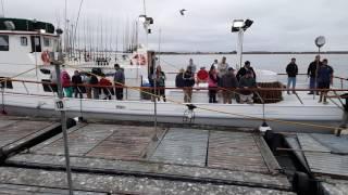 24KSportFishing Fishermans Landing San Diego Charter June 12 2016