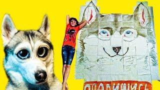 ГИГАНТСКИЕ РИСУНКИ ОТ ПОДПИСЧИКОВ!! (Хаски Бандит) Говорящая собака