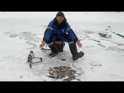 Attrezzatura per pesca di terra di video