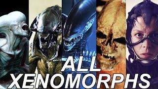 ALL Xenomorphs Explained