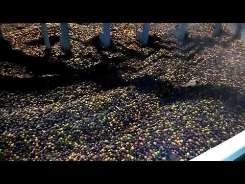 Secadora de granos 50 quintales