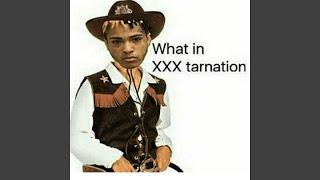 What in XXXTarnation