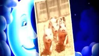 Метъл нощ, деца - Приказка за трите прасенца: Делян, Делянчо и Дилянски