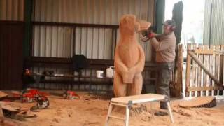 preview picture of video 'Knowsley Safari Parks Meerkat Sculpture'
