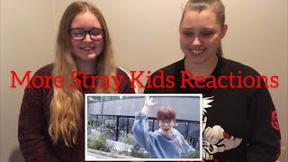 My Sister Reacts To Stray Kids Street MV's (Rock, Insomnia, Question, NS) — Stray Kids Reaction