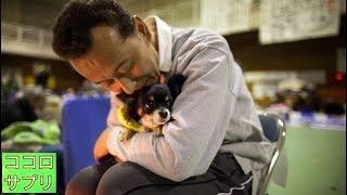 避難所に入れない・・・熱中症で亡くる動物も…ペット連れの避難所生活の現実に胸が痛む