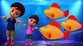 Machli Jal Ki Rani Hai | Hindi Rhymes | मछली जल की