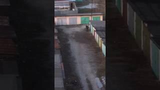 Параноик закрывает гараж