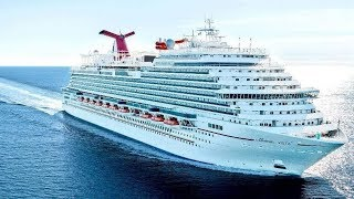 "AWE Dream Cruises ""Vista"""