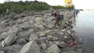 Рыбалка в новосибирске на гэс 2020г