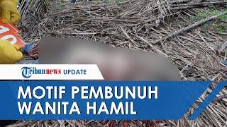 Terungkap! Ini Motif Pembunuhan Wanita Hamil di Kebun Sawit, Dibunuh setelah Menolong Pelaku