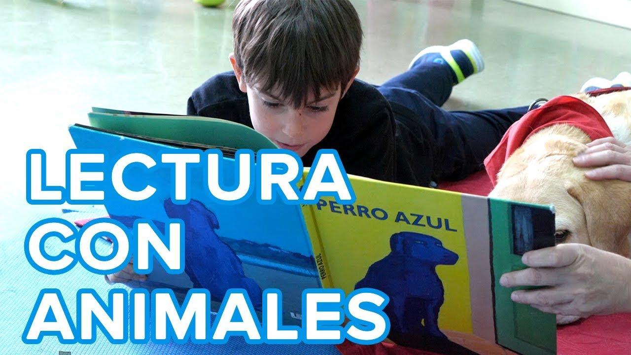 Beneficios de la terapia de lectura con animales para los niños ????