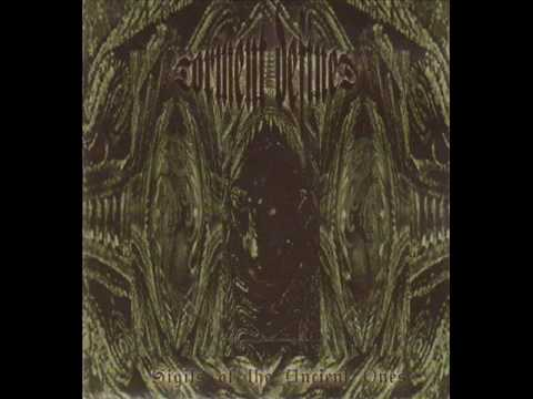 Torment Defined -  Into the forest of winter black