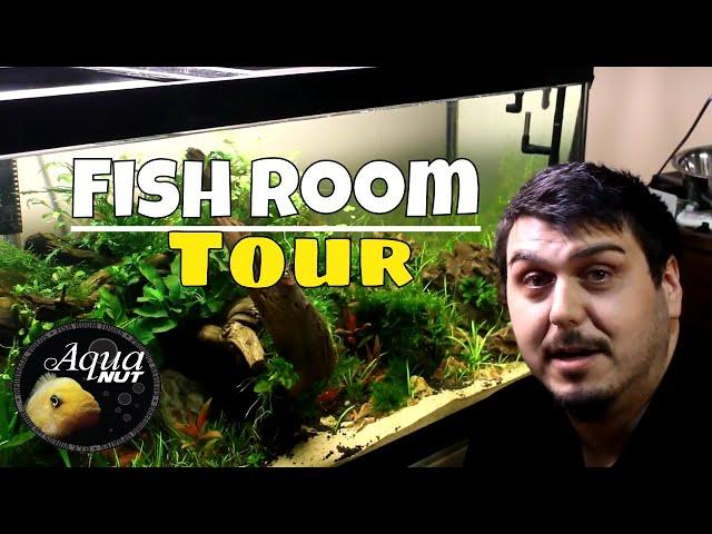 Aquarium Fish Room Tour of ALL OUR Tanks