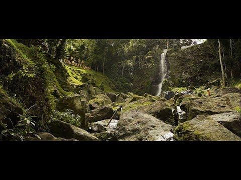 Harmoni Alam dan Manusia di PLTA Tonsealama