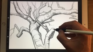 HOW TO DRAW TREE BRANCHES, Apple Pencil drawing tutorial on iPad Pro 12.9