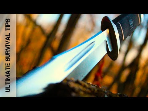 Wow! Beastly Blade! SOG Creed Knife – REVIEW