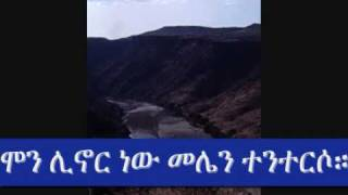 Ethiopian New Musicselemon Joker