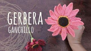 Tutorial Flor Gerbera Ganchillo | Crochet