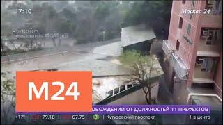 Метеорологи зафиксировали увеличение числа природных катаклизмов - Москва 24