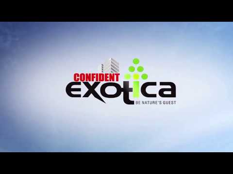 3D Tour of Confident Exotica