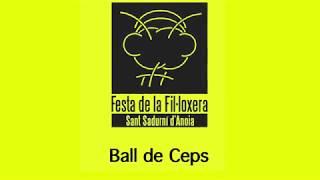 Festa De La Fil·loxera - Ball De Ceps    Estudi