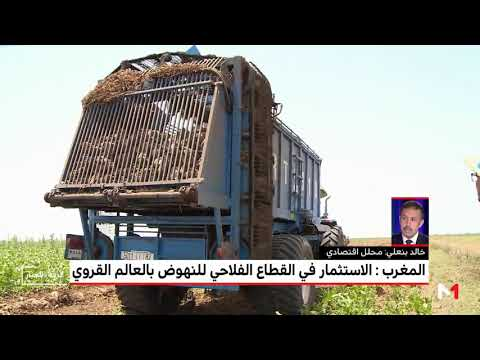العرب اليوم - شاهد:مُحلل اقتصادي  يكشف أهمية الاستثمار في قطاع الزراعة للنهوض بالعالم القروي